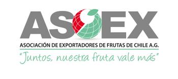 logo_asoexweb